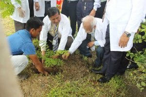 Prof. Dr. MA Rab, Mr. Mesbahul Islam, DNCC, Dr. Muyeed, DAE and other faculty members planting tree